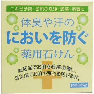 体臭や汗のにおいを防ぐ 薬用石けん 100g|kyuusansyoukai