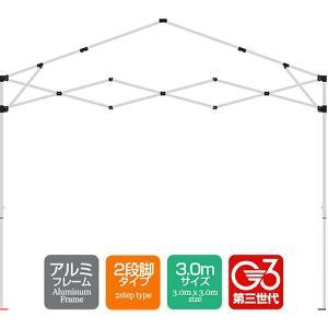 タープテント専用パーツ 脚パーツ  アルミフレーム 3.0mサイズ 2段脚タイプ G3第3世代|l-design