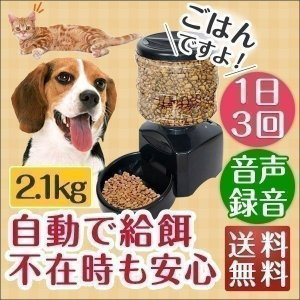 自動給餌器 自動給餌機 タイマー 犬 猫 音声録音 自動餌やり器 オートペットフィーダー ペット用品 ペットグッズ 最大3食 ドライフード 送料無料|l-design