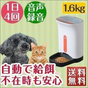 オートペットフィーダー 自動給餌器 ペットフィーダー ロック機能 録音機能 PEROLI 自動餌やり機 自動給餌機 犬 猫 いぬ ねこ 自動餌やり器 送料無料|l-design