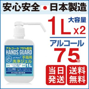 【日本製】ハンドジェル ポンプ 1L 2set 大容量 ハンズガード アルコール75% 除菌 殺菌 消毒 即納 業務用 2本 [日健] 離島以外送料無料|l-w