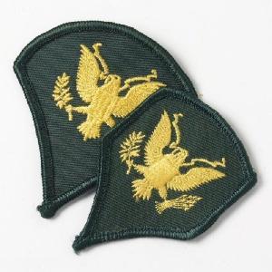 US.ARMY,スペシャリストワッペン(USED、ミリタリー)