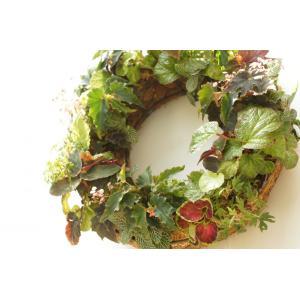 Begonian Begonian Wreath|la-classe-online