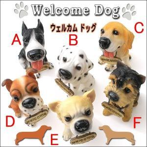 ウェルカムドッグ・WELCOME DOG♪愛嬌たっぷり!可愛いワンちゃんがお出迎え! la-palette