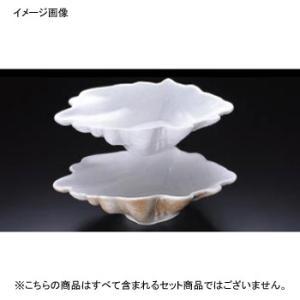 トロピカルシェル No.180 深型 ホワイト ロイヤル 33cm|lachance