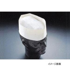 フォレージハット A95000 無地 (100枚入)|lachance