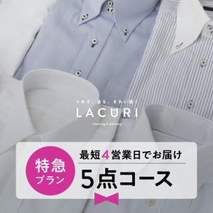 宅配 クリーニング 特急仕上げ 5点セット コート ダウン ジャケット シミ抜き 送料無料 lacuri-creaning