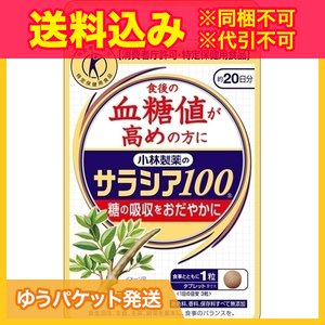 【ゆうパケット送料込み】小林製薬のサラシア10...の関連商品2