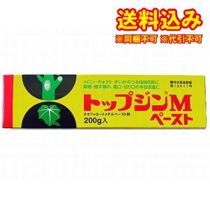 トップジンMペースト 200g※取り寄せ商品(...の関連商品3