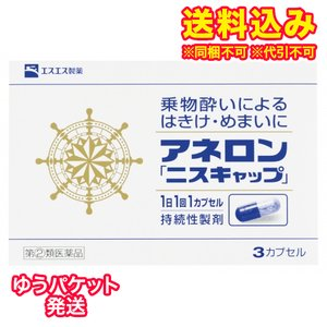 【DM便送料込み】【第(2)類医薬品】アネロン ニスキャップ 3カプセル