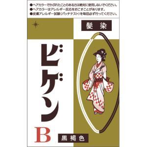 ビゲン B 黒褐色 6g【当日つく香川】|ladygokagawa