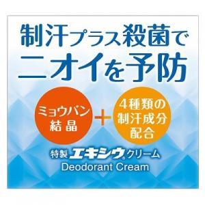 【医薬部外品】特製エキシウクリーム 30g|ladypoint