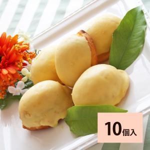(10個入)瀬戸内レモンケーキ