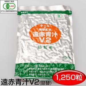 V2 1250粒 詰替用 1021