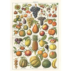 Cavallini Larousse Fruit Chart Poster Wrap Decoupage【並行輸入品】 lakibox28