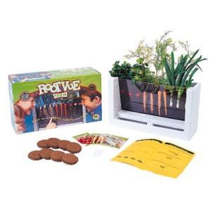 HSP Nature Toys Root-Vue Farm Multicolor, 16 Inch【並行輸入品】 lakibox28