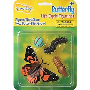 Butterfly Learning Toy - 4 Piece Set Shows Metamorphasis Of A Butterfly【並行輸入品】 lakibox28