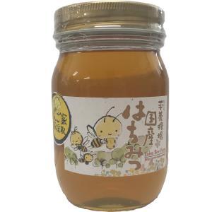 はちみつ 国産はちみつ500g りんごはちみつ 平養蜂場 青森県 八戸市 八戸|lalasite