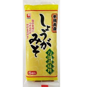 しょうがみそ 生姜みそ しょうが味噌 かねさ 20g5袋入×20 青森おでん おでん 県民ショー|lalasite