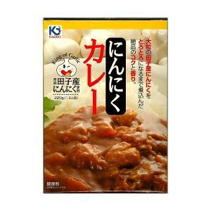 田子町産にんにくカレー 220g×5個 青森県田子産にんにく 味の海翁堂|lalasite
