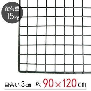 「送料無料」「大型便・時間指定不可」ワイヤーネット 黒 90×120|lamd
