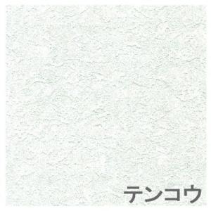 ヤマト家財宅急便「送料無料」 [代引不可]  TOSO  [トーソー] アクシエ アコーディオンドア  「100×178」 テンコウ|lamd