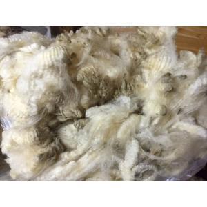 グリージーウール・コリデール 白 1kg <紡毛 紡ぎ 染め 羊毛 フェルト>|lamerr