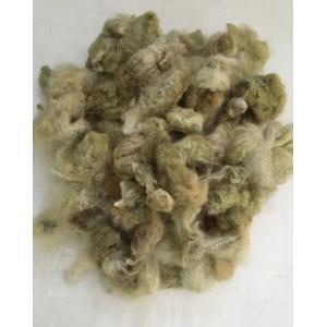 コットン 種付き 緑綿 100g <綿 オーガニック 紡ぎ>|lamerr