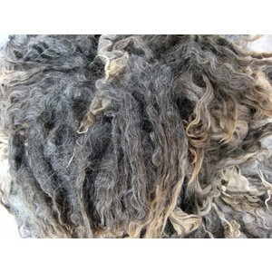 グリージーウール・イングリッシュレスター1kg グレー <紡毛 紡ぎ 染め 羊毛 フェルト>  予約制|lamerr