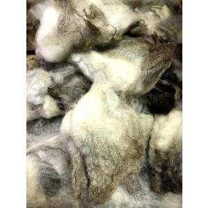 グリージーウール・シェットランド 白/グレー系1.4kg <紡毛 紡ぎ 染め 羊毛 フェルト>|lamerr