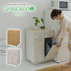 Lycka land ダストボックスキッチン収納 2分別 ペール リビング収納 サイドボード キッチンワゴン ワゴン キッチンカウンター ごみ箱 ホワイ|lamp