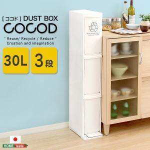 縦型分別ダストボックスCocod-ココド- (3段 スリム 省スペース フタ付き フットペダル ゴミ箱 30L) lamp