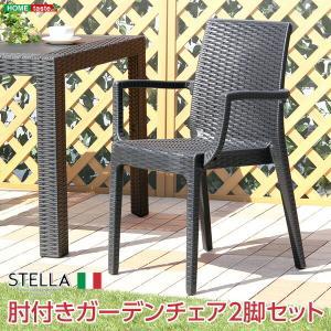 ガーデン肘付チェア 2脚セットステラ-STELLA- (ガーデン カフェ)|lamp