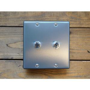 トグルスイッチプレート フラットスクエア 2個用 リード線付  インダストリアル|lamps1122