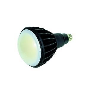 日動工業ハイスペックエコビック100W  L100W-E39-WBK-50K-N (ワイド)(黒)|lamps