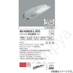 LED防犯灯 AU43655L コイズミ照明|lampya