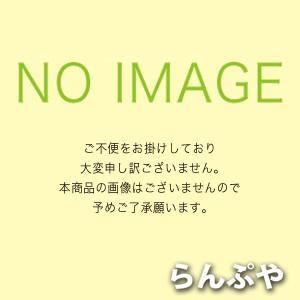 DF-20204YS1(DF20204YS1)センサ別置形 東芝ライテック(在庫限り)|lampya
