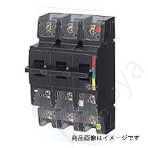 開閉器 DS62 2P 60A    DS622P60A〔代引不可〕 lampya