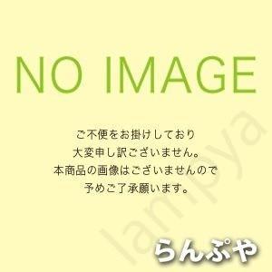東芝ライテック(TOSHIBA) インバーター安定器 FHP105×1灯用 FMB-105R6205R【FMB105R6205R】FMB-105R6203R2代替品|lampya