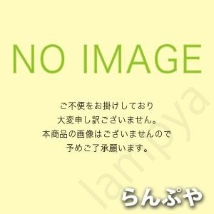 東芝ライテック(TOSHIBA) インバーター安定器 FHP32、FPL36×2灯用 FMB-2-32R6223R【FMB232R6223R】|lampya