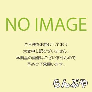 HIDランプ アイ 水銀ランプ HF200X 岩崎電気|lampya