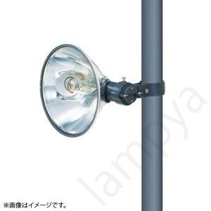 HID投光器 HM4021T 岩崎電気|lampya