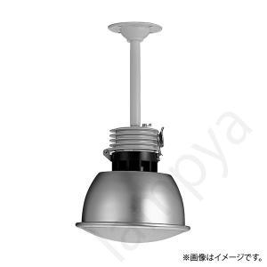 JGW172P-K(JGW172PK)非常灯 非常用照明器具 岩崎電気|lampya