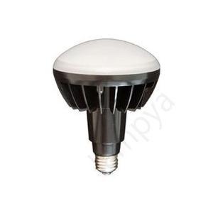 LEDアイランプ E26 口金 岩崎電気 レディオック 本体黒色塗装 (使用LED電球色) LDR100/200V18L-H/BK【LDR100200V18LHBK】|lampya