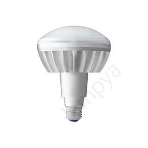 LEDアイランプ E26 口金 岩崎電気 レディオック 本体白色塗装 (使用LED電球色) LDR100/200V18L-H/W【LDR100200V18LHW】|lampya