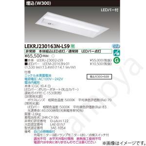 LEKRJ230163NLS9(LEERJ-23002-LS9+LEEM-20163N-01)LEKRJ230163N-LS9 LED非常灯 非常用照明器具 セット 東芝ライテック(TOSHIBA)|lampya