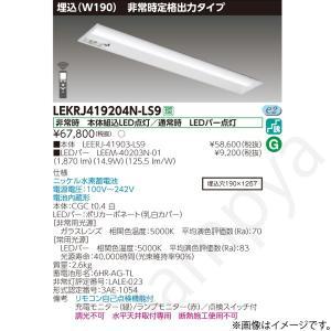 LEKRJ419204N-LS9(LEERJ-41903-LS9+LEEM-40203N-01)LEKRJ419204NLS9 LED非常灯 非常用照明器具 セット 東芝ライテック|lampya