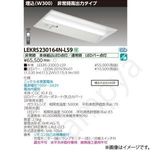 LEKRS230164NLS9(LEERS-23003-LS9+LEEM-20163N-01)LEKRS230164N-LS9 LED非常灯 非常用照明器具 セット 東芝ライテック|lampya