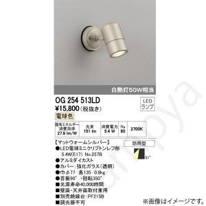 LEDスポットライト OG254513LD(OG 254 513LD) オーデリック|lampya