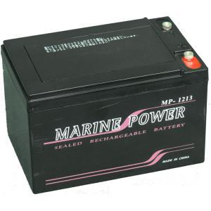 12V13AHバッテリー (専用充電器付)の商品画像|ナビ